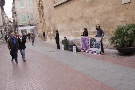El Valeriano Allés Menorca volvió a realizar un gran partido
