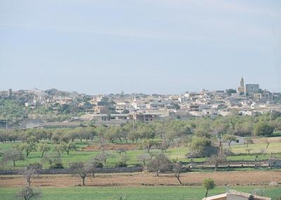 El 2016 fue un año récord para el Vi de la Terra de Menorca tanto en ventas, como en producción.