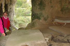 Los forestales alertan de un rebrote de la plaga de la oruga procesionaria