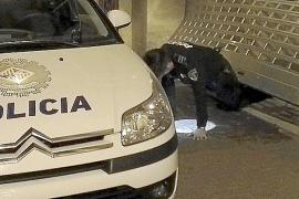 Bauzá a Barceló sobre las tarjetas del PP: «Piensa el ladrón que todos son de su condición»