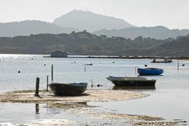 Libertad con cargos para los 15 detenidos en la trama de Ciutadella