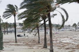 AVIBA plantea no trasladar turistas a Ciutadella por la ubicación del bus