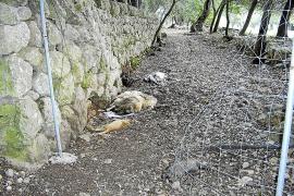 La Assemblea de Docents considera «vergonzosa» la oferta de 250 plazas planteada por Riera