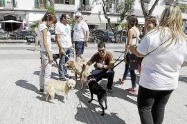 El Consell cuenta ya con el expediente para la candidatura de Menorca Talayótica