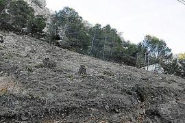 El Consorcio verificó las siete obras en S'Albufera pero no dio prioridad al caso