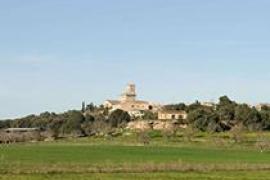 Vox renuncia a presentarse a las elecciones del 24 de mayo en Balears