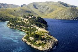 Vicenç Tur y Noemí Camps hacen públicas sus rentas de 2014