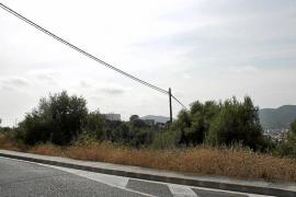 «Los retos de Balears son mejorar las conexiones con Europa y controlar las tasas»