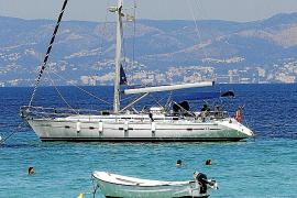 13 detenidos por introducir droga en Mallorca a través de peluches con destino Son Banya
