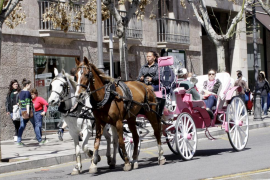 """La Iglesia de Menorca propugna """"identidad e integración"""" en respuesta a los inmigrantes"""