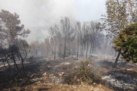 La Guardia Civil inicia la investigación para determinar las causas del incendio del restaurante  Es Pla