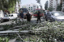 La Policía Nacional desarticula una organización criminal en Ciutadella