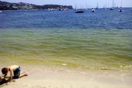 Nueva vida para el mítico hotel Montesol de Eivissa