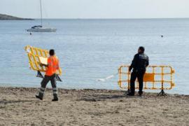 Més y PSOE plantean en el Parlament mejoras para el transporte insular