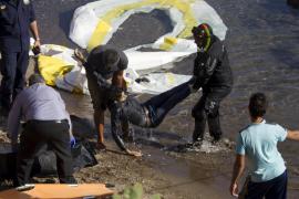 El IEO evalúa los ecosistemas donde faena flota de arrastre en Mallorca y Menorca