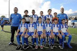 La población de milano real alcanza las 31 parejas en Menorca