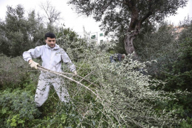 La Guardia Civil detiene a dos personas en Ciutadella en una operación nacional antidroga