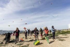 El Plan de Infraestructuras Educativas prevé invertir 15 millones en Menorca