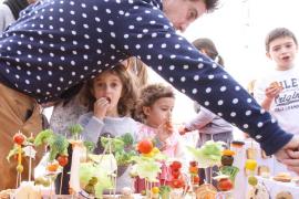 Imaginació i diversió al carnaval de Sant Lluís