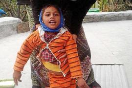 El 'hospital' del GOB atendió el año pasado a 1.097 animales