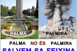 Balears garantiza la protección de la Posidonia mediante un decreto