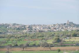 El vino de Menorca aumenta más de un 10% sus ventas